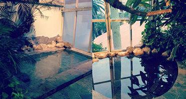 ジャングルパレスホテル